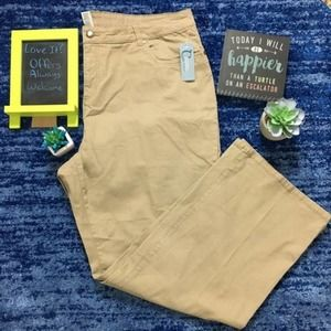 Classic Elements Structured Twill Jeans Tan 22W